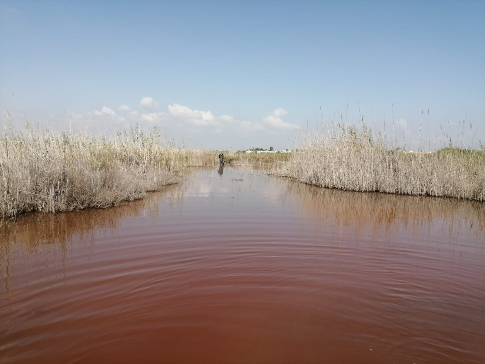 La laguna de Torrevieja es rosa y en ella se localiza la explotación salinera torrevejense