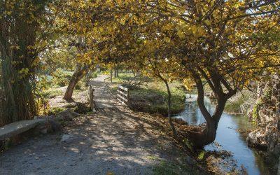 """Ruta verde """"Els Estanys"""""""