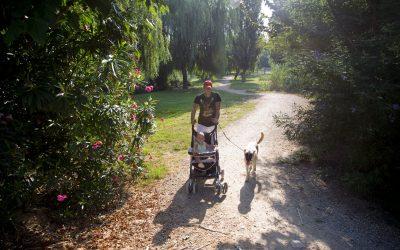 Quart de Poblet descubre la fauna y flora de su entorno