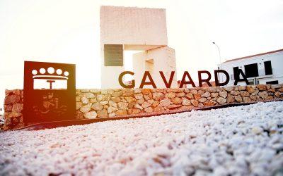 Gavarda