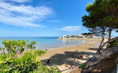 Alcossebre lleva la integración a sus playas